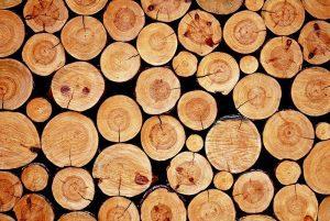 7 ragioni per non costruire in legno